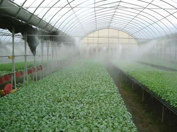 Туманообразующие установки своими руками